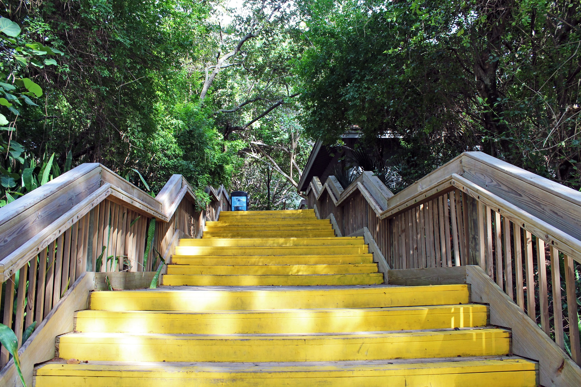 stairs patrick coombe delray beach