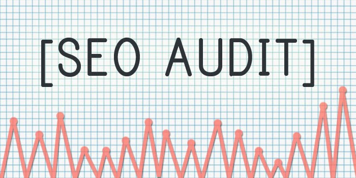 seo audit img