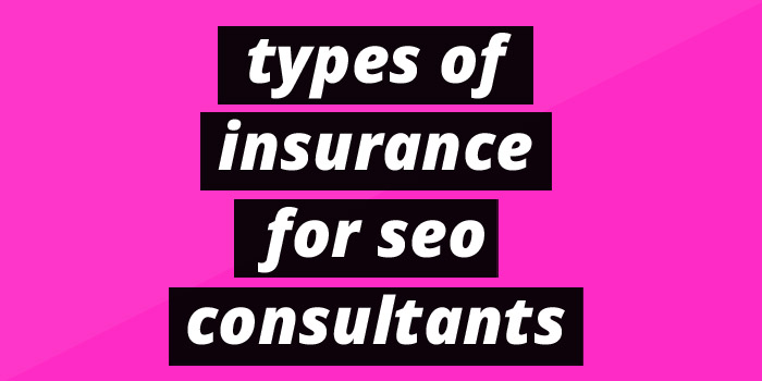 Types of Insurance for SEO consultants