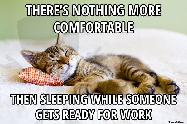 sleeping while work meme